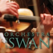 Orchestra of the Swan – Concerto Circle Partnership