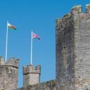 Wakemans Expands Caernarfon Team to Meet Demand